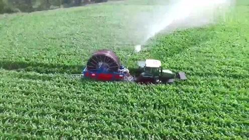 实拍国外小型蔬菜洒水机,简单有又实用,真是大开眼界!