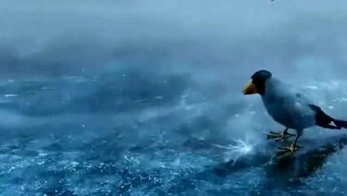 被冰封五百年的狐妖,在此刻苏醒,破冰而出的那刻太美了