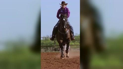私人马场赛马 灵活操控马匹走位 人马默契十足