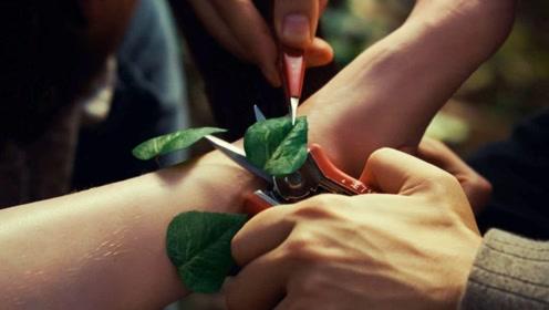 孩子脚上长出树叶,父母用剪刀剪掉,最后却变成了这样