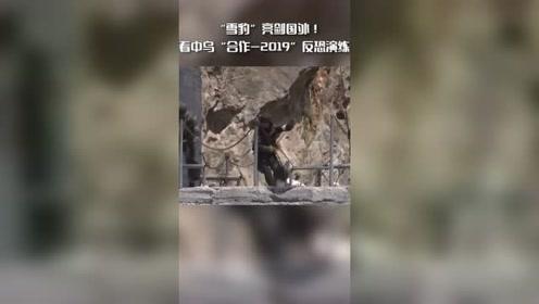 """""""雪豹""""亮剑国外!看中乌""""合作-2019""""反恐演练"""