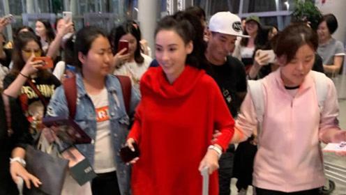 张柏芝穿红衣现身机场瘦到极致,弟弟全程呵护姐姐