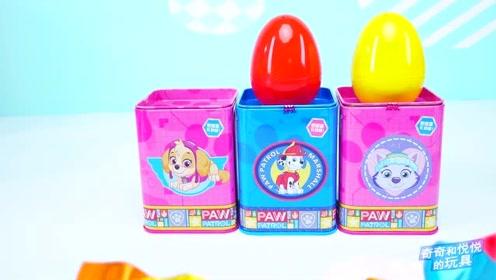 《奇奇和悦悦的玩具》汪汪队跳跳糖盒蛋