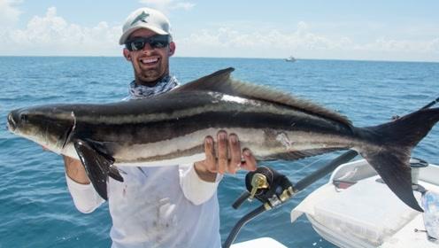 史诗般的鲨鱼行动,捕鱼的最大挑战,战胜鲨鱼
