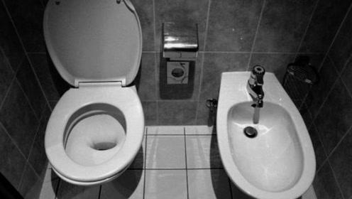 欧洲酒店里一个厕所两个马桶?用错了会有点尴尬!