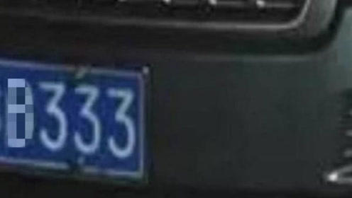 """摇到连号""""333""""以为大喜, 车主欣喜万分,看到字母蒙圈了"""