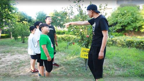 4个小朋友想吃苹果,果农几次警告偷吃罚款,他们吃了却没有罚钱?