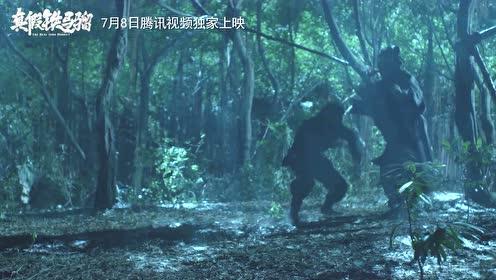 螳螂拳vs猴拳,谁才是中华武学巅峰
