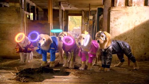 5只狗狗获得神奇光环,拥有了5种不同超能力,成为了超级英雄!