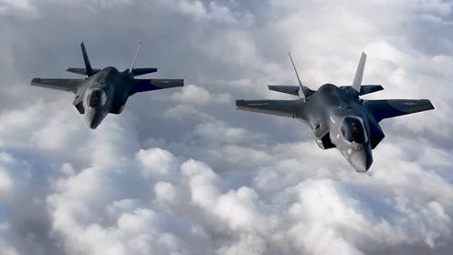 在世界种类繁多的战斗机中,我只喜欢F-35