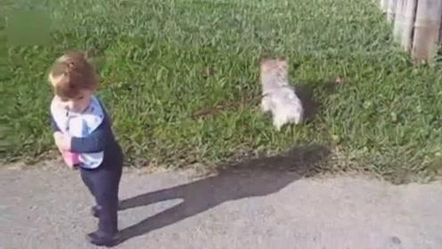 宝宝牵着狗狗去遛弯,走两步这绳子就不见了,网友:到底谁遛谁