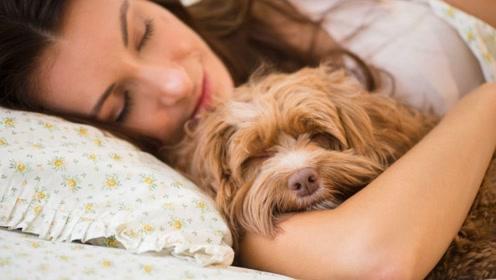 女儿与狗同吃同睡,半年后肚子不舒服,医院检查妈妈瞬间崩溃