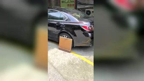 小区里的狗太猖狂了,在这停车的司机,得有多无奈!