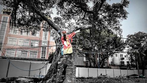 萤火演讲:城中村钉子树要价1200万 百户老知青共用一个厕所