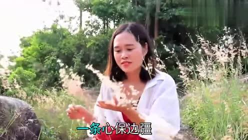李谷一的《边疆的泉水清又纯》,十分经典,永久流传