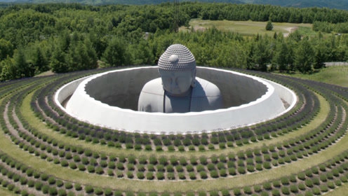 """日本最""""憋屈""""的佛像:被建在墓地里,只有头顶能被看到!"""