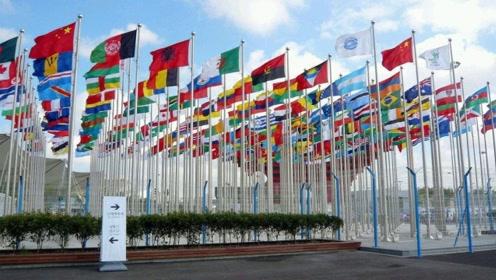 为什么世界各国国旗几乎没有紫色?看完之后长知识了