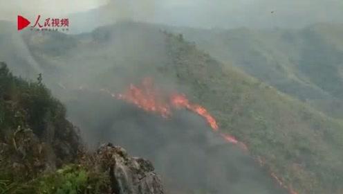湖北咸宁发生森林火灾,已紧急调动两架直升机实施吊桶灭火