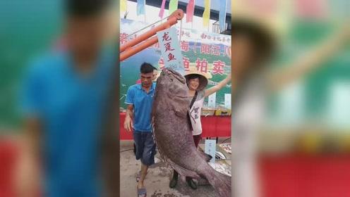 """198斤""""龙趸鱼""""被拍卖 渔业部门及时制止"""