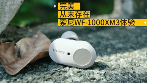 完美?从未存在!索尼WF-1000XM3 详细体验
