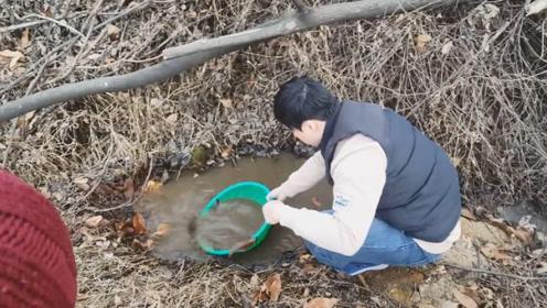 这个小水坑里也能抓到鱼,资源真好