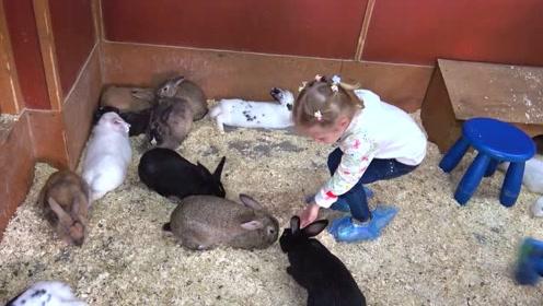 萌娃和小动物们一起玩的可开心了!萌娃:小兔子真是萌萌哒!