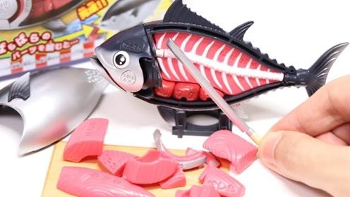 日本连儿童玩具鱼都能解剖,制作实在太精良!网友:国产得学!