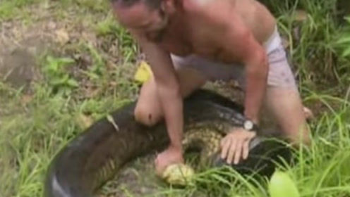 宠物狗被蟒蛇直接吞下,男子将其捉住,之后的做法引人深思!