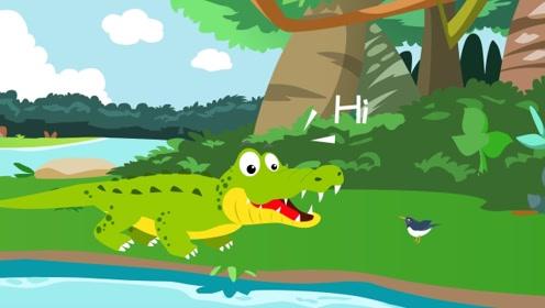鳄鱼和千鸟为什么能成为好朋友?