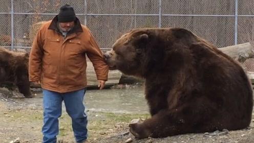 老人与熊一起玩耍嬉戏,不料下一秒意外发生,镜头记录下全过程!