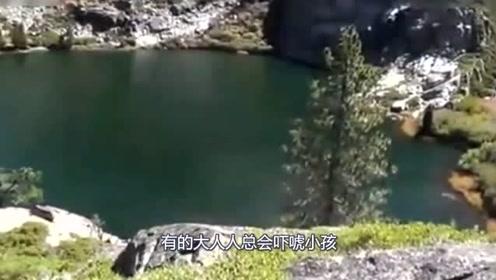 国外男子在湖边拍下巨型不明物,走进一看吓懵了