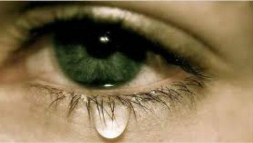 经常流泪还有好处?眼泪在显微镜下被放大1000倍,美到窒息!