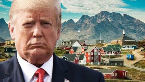 """这个特朗普扬言要买下的岛正成为""""淘金热""""的""""新兴角色"""""""
