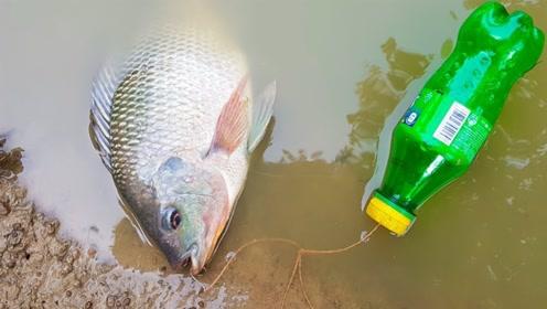 男孩竟用塑料瓶钓鱼,半小时后果然收获满满,简直让人难以置信!
