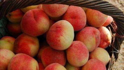 吃完桃子后千万不能碰它,一口一堆癌细胞,很多人都不注意!