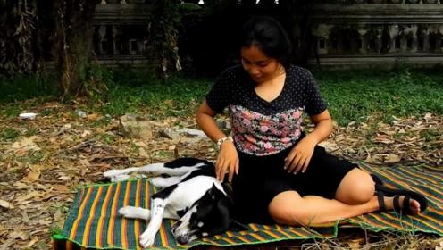 美女和狗狗形影不离,半年后肚子剧痛,检查结果出来泪崩了