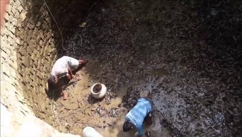 废井总是传来沙沙声,村民将水抽干一看,黑压压一片