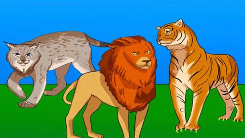看图推理:图中的三只动物中,谁是人类伪装的?
