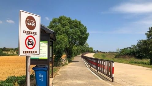 南京桠溪慢城景区禁行机动车引争议,经营户吐槽客流大幅滑坡