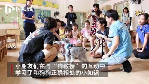 """三只""""狗教授"""",给小朋友上课了:萌萌的老师引导他们热爱世界"""