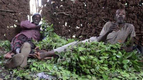 最贫穷的国家,当地人不种粮食却种草,每天把草当饭吃!