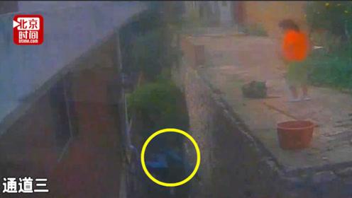 双重惩罚!小偷盗窃逃跑从高墙跌下双腿粉碎性骨折 现被警方刑拘