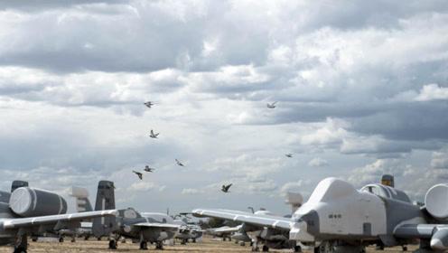 美国最大飞机坟场,五千多架飞机在此陈列,从空中看下去特别壮观