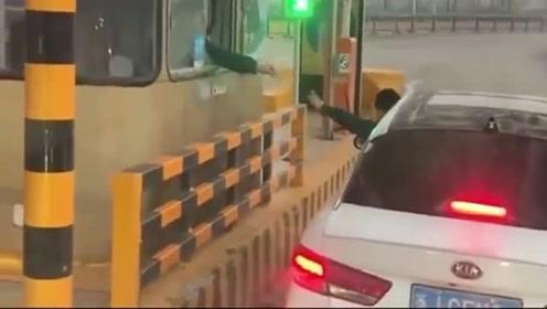 女司机过收费站,实在没忍住,是没带智商出门吗?