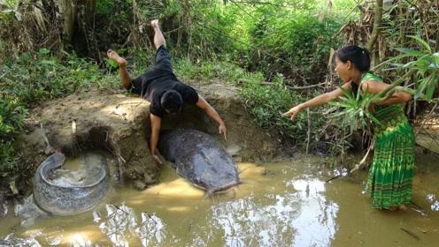 柬埔寨夫妻出门觅食,遇到两条肥鲶鱼,又有一顿野味可以饱餐了!