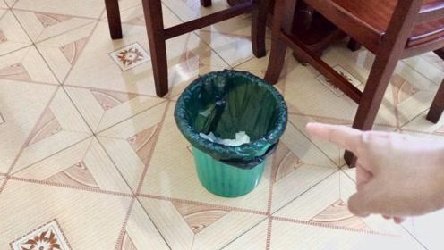 不管家里多有钱,这三个位置不能放垃圾桶,真不是迷信,都看看吧