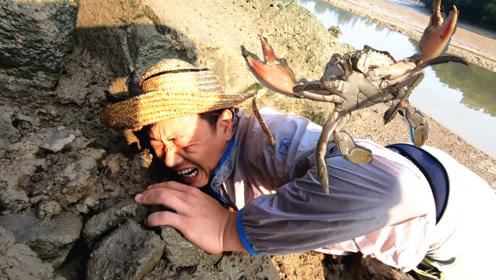 这么大的螃蟹夹人有多疼?看看阿锋的表情就知道了