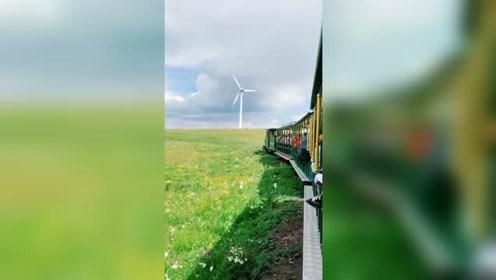 黄花沟旅游,来草原上坐小火车!