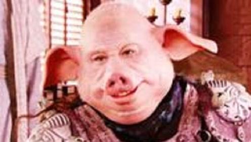 猪八戒转世投胎后为何咬死猪妈妈?是因为变猪后长的丑,还是为了名利?