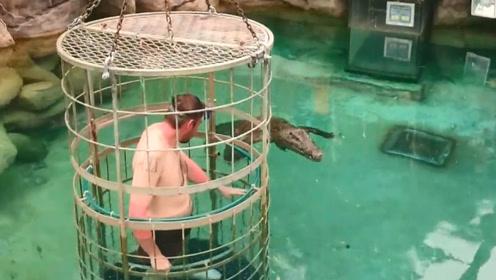 男子在笼子里挑战鳄鱼,这场面看见都害怕,镜头记录全过程!